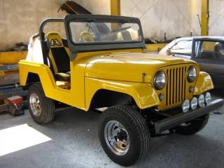 Veículo: Willys - Jeep -  em Ribeirão Preto